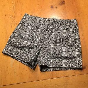 7th Avenue New York and Company Shorts